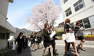 日本就职工作